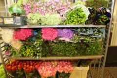 Logistiek medewerker/ Inpakker bloemen